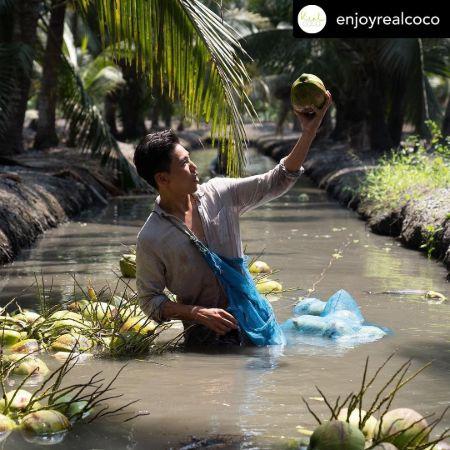 Crystal's brother Jaffrey's Coconut business, source Instagram